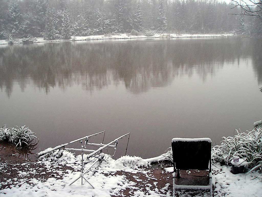 Winter-Carp-Fishing