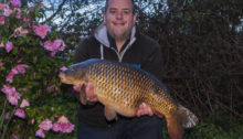 23lb 14oSelby 3 lakes Common Carp